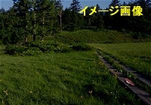 20110716-62a.jpg