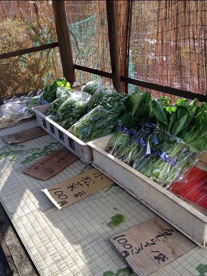 野菜売り場.jpg