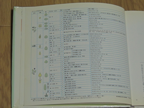 Dscn1376a.jpg